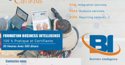 Formation en Business Intelligence  BI
