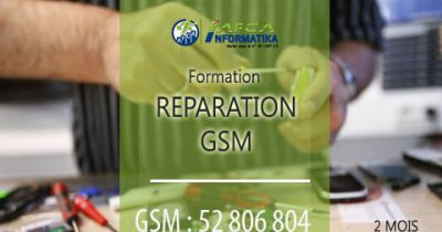 formation reparation GSM